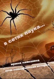 В сетях паука...